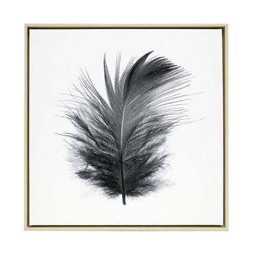 Picture of Tranquil feather canvas 64x64