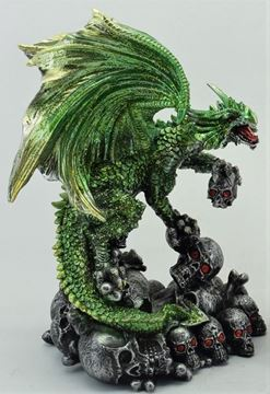 Picture of Dragon/skull green