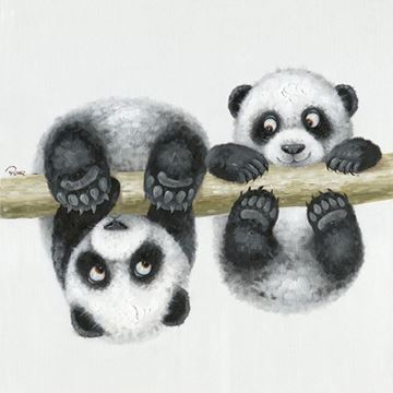 Picture of Panda play