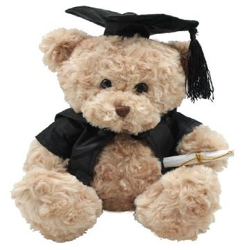 Picture of Brainy box bear graduation