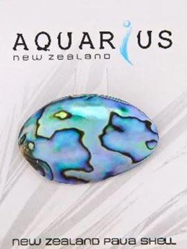 Picture of Paua pod brooch