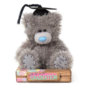 Picture of Graduation bear sitting