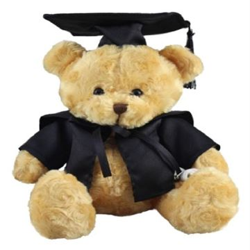 Picture of Scholar bear