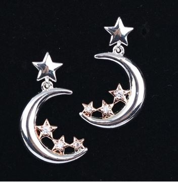 Picture of EQ moon star earrings