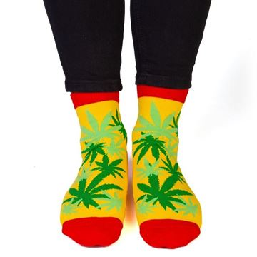 Picture of Feet socks weed